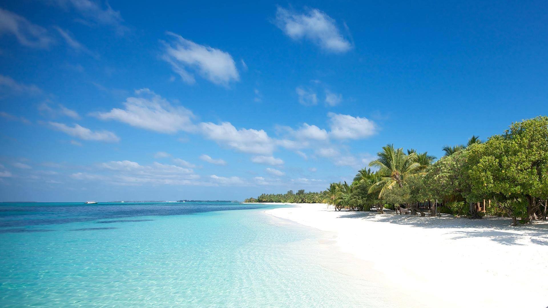 Bãi biển An Bàng - Hội An